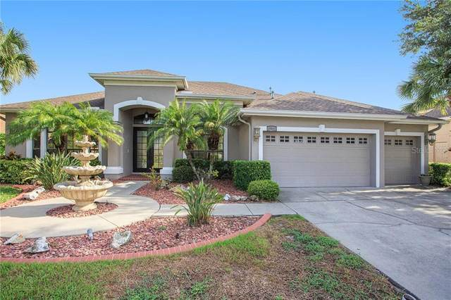 19821 Strathmore Place, Land O Lakes, FL 34638 (MLS #T3252172) :: Realty Executives Mid Florida