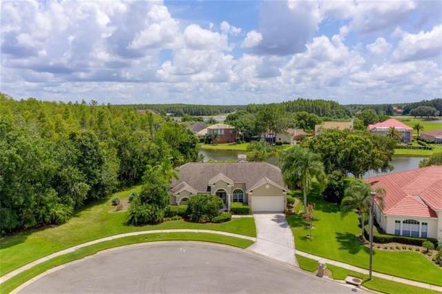 4302 Place Le Manes, Lutz, FL 33558 (MLS #T3252173) :: Carmena and Associates Realty Group