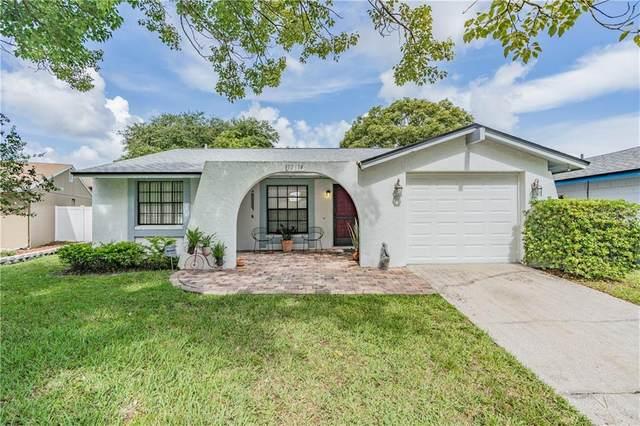 12614 Nicole Lane, Tampa, FL 33625 (MLS #T3252190) :: Medway Realty