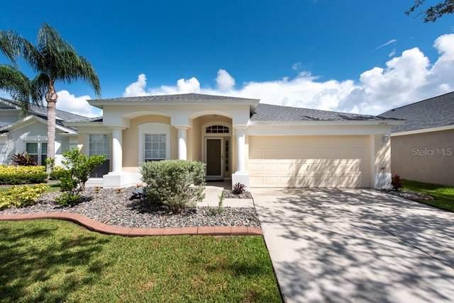 12416 Cedarfield Drive, Riverview, FL 33579 (MLS #T3252195) :: Dalton Wade Real Estate Group