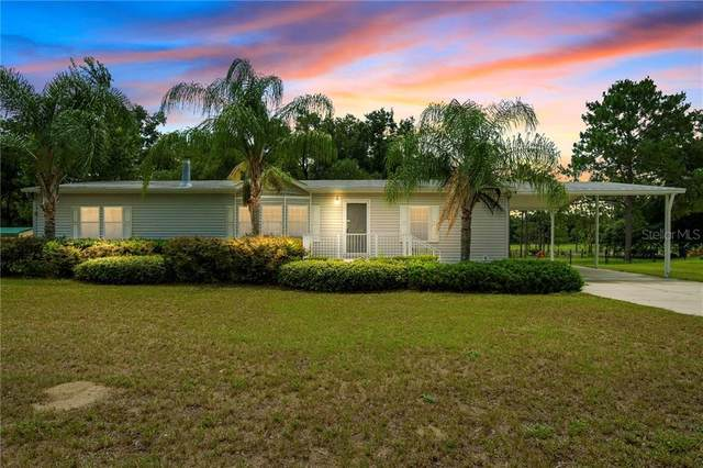 13614 Kent Bradley Street, Dade City, FL 33525 (MLS #T3252214) :: Team Borham at Keller Williams Realty
