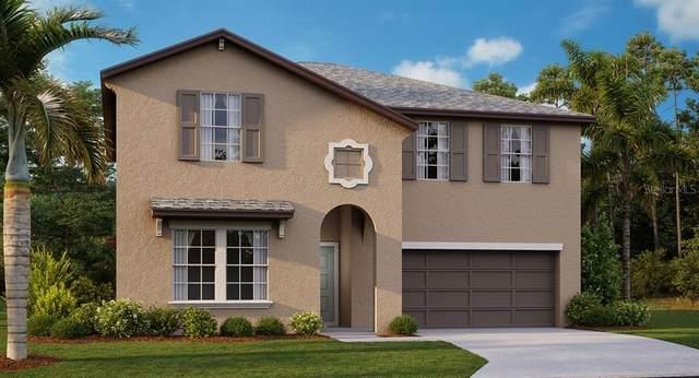 6938 King Creek Drive, Sun City Center, FL 33573 (MLS #T3252253) :: Godwin Realty Group