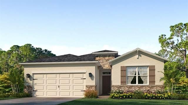 14026 Mount  Laurel Trail, Lakewood Ranch, FL 34211 (MLS #T3252265) :: Premier Home Experts