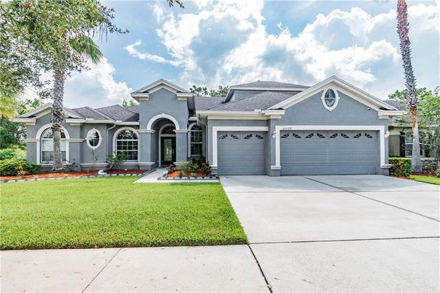 20129 Tamiami Avenue, Tampa, FL 33647 (MLS #T3252336) :: Gate Arty & the Group - Keller Williams Realty Smart