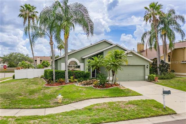 12002 W Pond Way, Tampa, FL 33635 (MLS #T3252339) :: Mark and Joni Coulter | Better Homes and Gardens