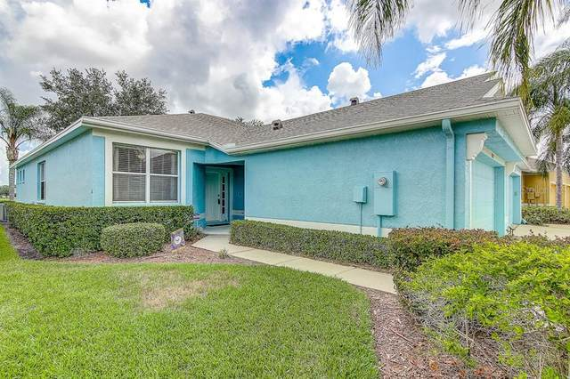 11519 Captiva Kay Drive, Riverview, FL 33569 (MLS #T3252341) :: Dalton Wade Real Estate Group