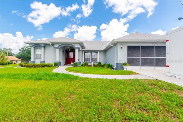 12311 Huron Street, Spring Hill, FL 34609 (MLS #T3252345) :: Young Real Estate