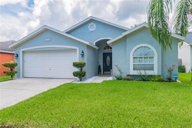 11128 Indian Oaks, Tampa, FL 33625 (MLS #T3252360) :: GO Realty