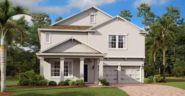 1503 Graceful Doe Loop, Winter Springs, FL 32708 (MLS #T3252395) :: Alpha Equity Team
