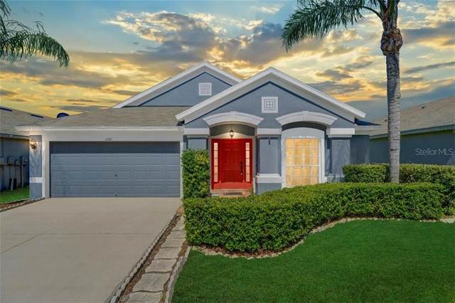 3241 Keswick Court, Land O Lakes, FL 34638 (MLS #T3252396) :: Rabell Realty Group