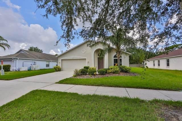 2331 Roanoke Springs Drive, Ruskin, FL 33570 (MLS #T3252406) :: Frankenstein Home Team
