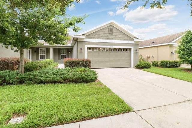 16026 Starling Crossing Drive, Lithia, FL 33547 (MLS #T3252413) :: The Duncan Duo Team
