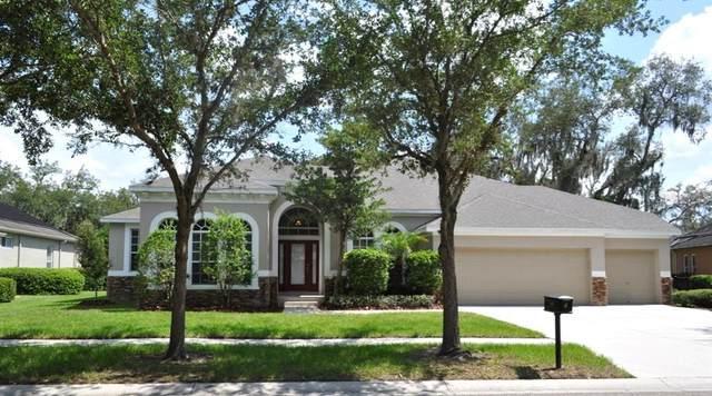 5816 Terncrest Drive, Lithia, FL 33547 (MLS #T3252425) :: Team Bohannon Keller Williams, Tampa Properties