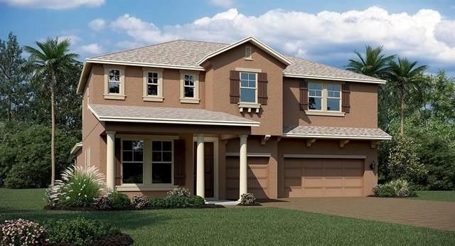 440 Dancing Water Drive, Winter Springs, FL 32708 (MLS #T3252451) :: Alpha Equity Team