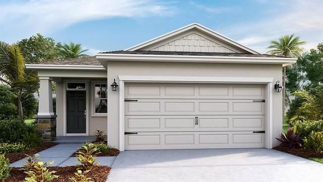 5410 Sunshine Drive, Wildwood, FL 34785 (MLS #T3252456) :: GO Realty