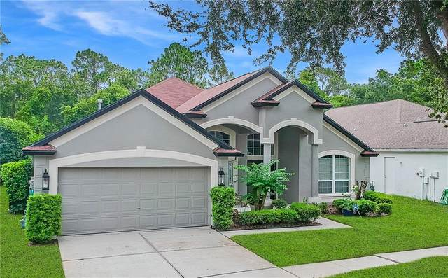 5905 Tealwater Place, Lithia, FL 33547 (MLS #T3252461) :: Alpha Equity Team