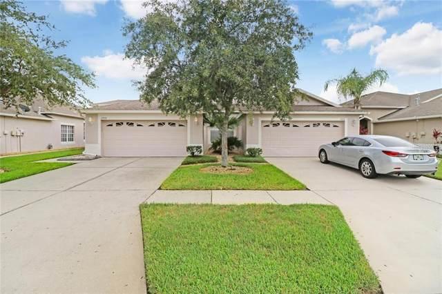 31920 Stillmeadow Drive, Wesley Chapel, FL 33543 (MLS #T3252463) :: Griffin Group