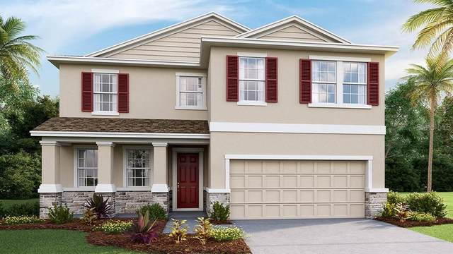 2942 Living Coral Drive, Odessa, FL 33556 (MLS #T3252507) :: GO Realty