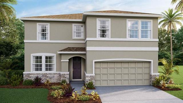 2984 Living Coral Drive, Odessa, FL 33556 (MLS #T3252514) :: GO Realty