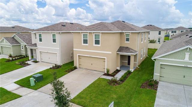 8192 Pelican Reed Circle, Wesley Chapel, FL 33545 (MLS #T3252530) :: Alpha Equity Team