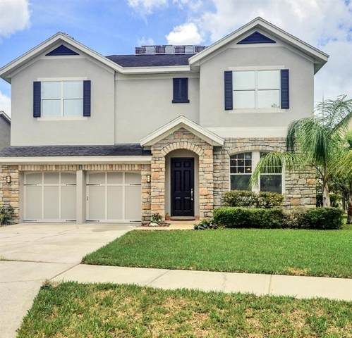 14642 Chatsworth Manor Circle, Tampa, FL 33626 (MLS #T3252536) :: Medway Realty