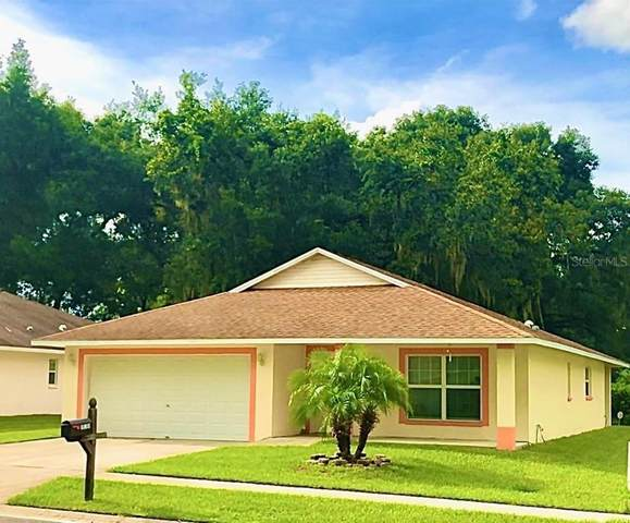 15401 Callista Lane, Dade City, FL 33523 (MLS #T3252542) :: Florida Real Estate Sellers at Keller Williams Realty