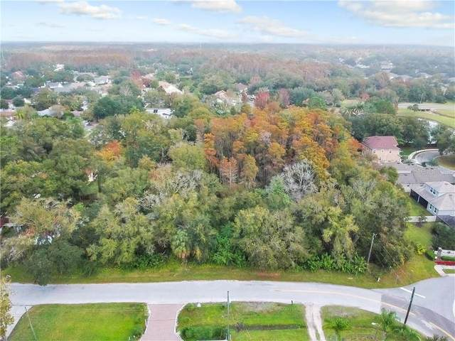 Avonwood, Tampa, FL 33625 (MLS #T3252553) :: Zarghami Group