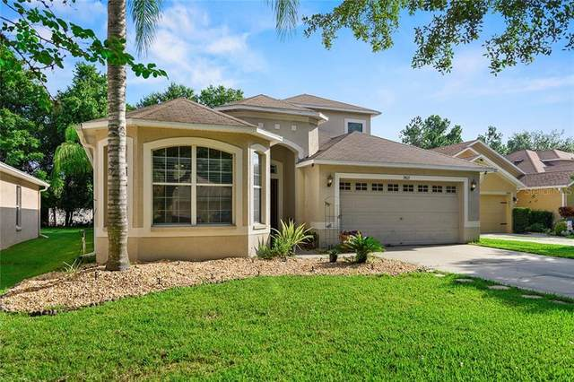 7803 Blue Spring Dr Drive, Land O Lakes, FL 34637 (MLS #T3252554) :: Burwell Real Estate
