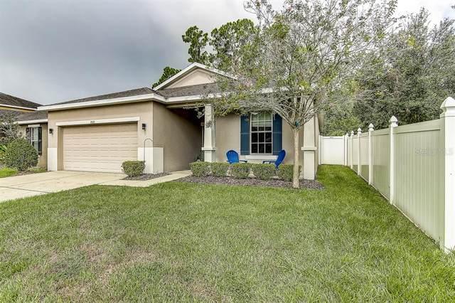 8509 Tidal Breeze Drive, Riverview, FL 33569 (MLS #T3252555) :: The Duncan Duo Team