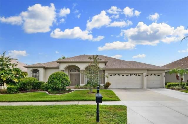 10012 Oxford Chapel Drive, Tampa, FL 33647 (MLS #T3252614) :: Dalton Wade Real Estate Group