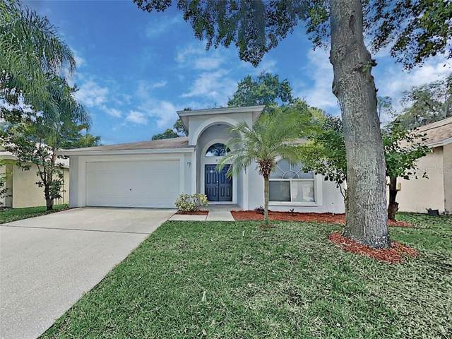 4604 Preston Woods Drive, Valrico, FL 33596 (MLS #T3252621) :: Team Bohannon Keller Williams, Tampa Properties