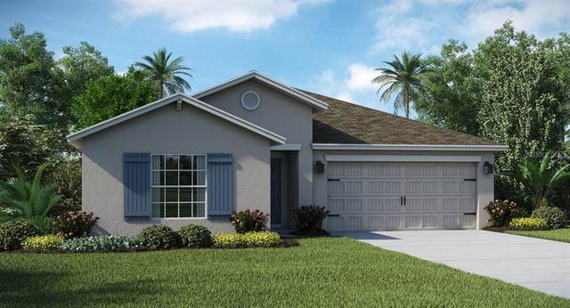 215 Bergamot Loop, Davenport, FL 33837 (MLS #T3252634) :: The Light Team