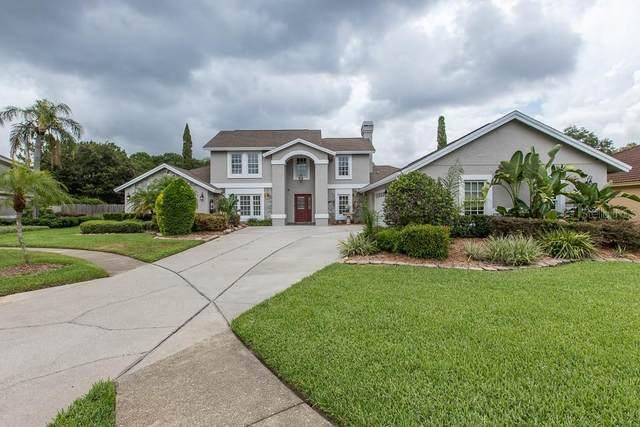 15103 Elmcrest Street, Odessa, FL 33556 (MLS #T3252652) :: Team Borham at Keller Williams Realty