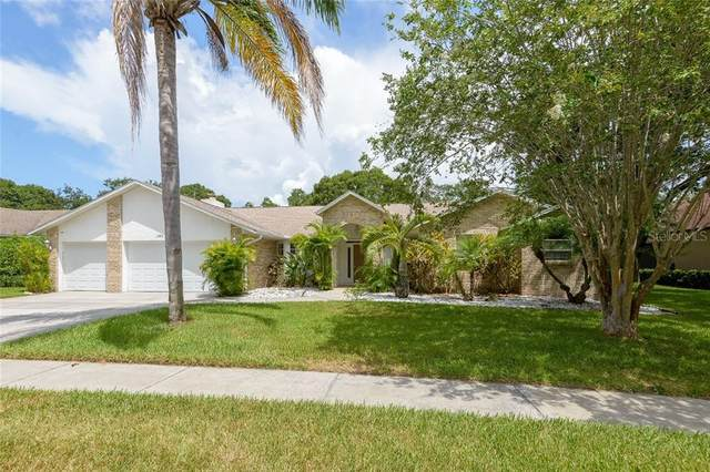 2314 Eagle Bluff Drive, Valrico, FL 33596 (MLS #T3252699) :: Team Bohannon Keller Williams, Tampa Properties