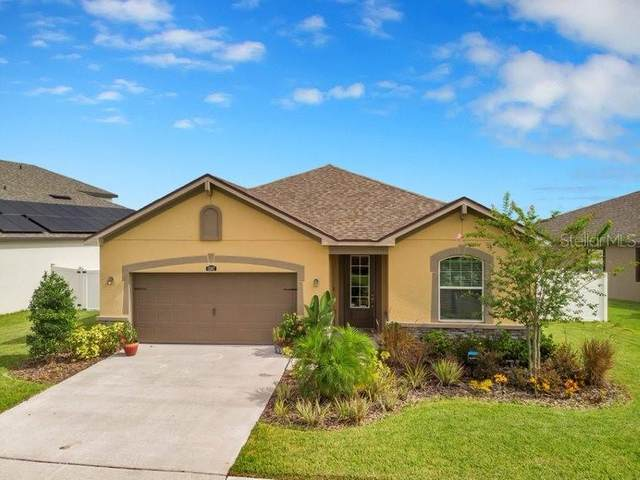 13102 Rain Lily Drive, Riverview, FL 33579 (MLS #T3252744) :: Mark and Joni Coulter | Better Homes and Gardens