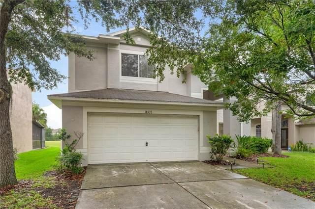 18176 Sandy Pointe Drive, Tampa, FL 33647 (MLS #T3252762) :: Frankenstein Home Team