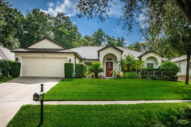 8834 Alafia Cove Drive, Riverview, FL 33569 (MLS #T3252763) :: Team Bohannon Keller Williams, Tampa Properties