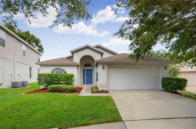 11120 Silver Dancer Drive, Riverview, FL 33579 (MLS #T3252791) :: Medway Realty