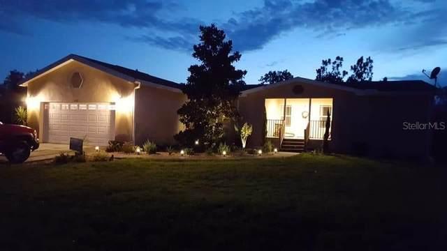11439 Fulmar Road, Weeki Wachee, FL 34614 (MLS #T3252816) :: Premium Properties Real Estate Services
