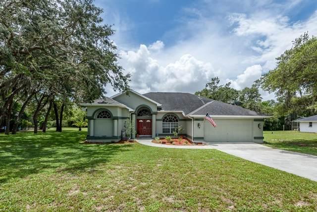 11456 Emerald Ridge Court, Spring Hill, FL 34609 (MLS #T3252818) :: Dalton Wade Real Estate Group