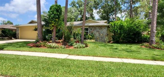 3625 Fairway Forest Circle, Palm Harbor, FL 34685 (MLS #T3252831) :: The Light Team