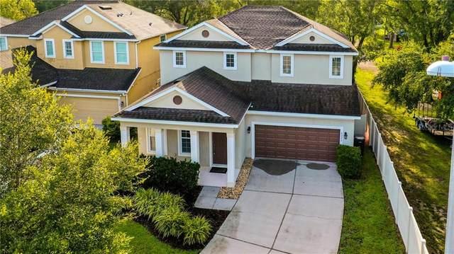 8220 Nectar Ridge Court, Odessa, FL 33556 (MLS #T3252833) :: Team Borham at Keller Williams Realty