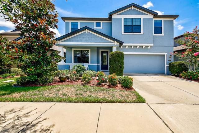 866 Vino Verde Circle, Brandon, FL 33511 (MLS #T3252837) :: Burwell Real Estate