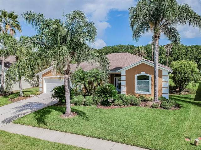 24716 Blazing Trail Way, Land O Lakes, FL 34639 (MLS #T3252839) :: Rabell Realty Group