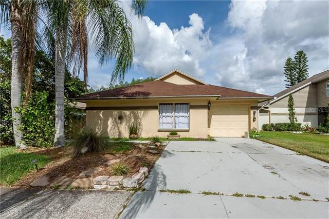 11917 Hickorynut Drive, Tampa, FL 33625 (MLS #T3252841) :: Medway Realty