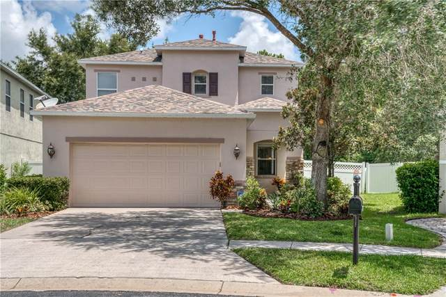 2428 Spring Hollow Loop, Wesley Chapel, FL 33544 (MLS #T3252876) :: Pepine Realty