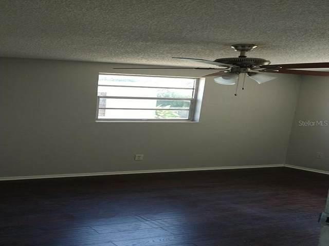 2227 Chatlin Road, Holiday, FL 34691 (MLS #T3252887) :: Team Borham at Keller Williams Realty