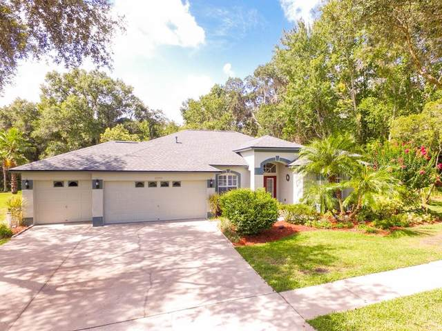 12501 Riverglen Drive, Riverview, FL 33569 (MLS #T3252895) :: Team Bohannon Keller Williams, Tampa Properties