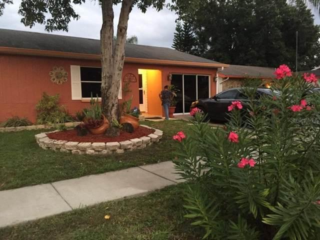 1012 Bridlewood Way, Brandon, FL 33511 (MLS #T3252896) :: Team Bohannon Keller Williams, Tampa Properties