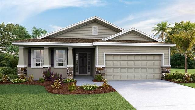 16616 Goose Ribbon Place, Wimauma, FL 33598 (MLS #T3252903) :: Cartwright Realty